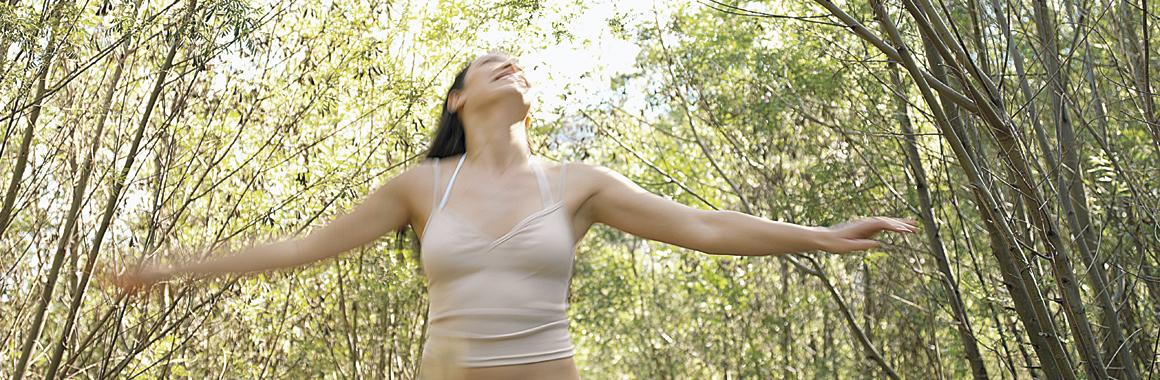 Dru Ayurveda image dancing in trees