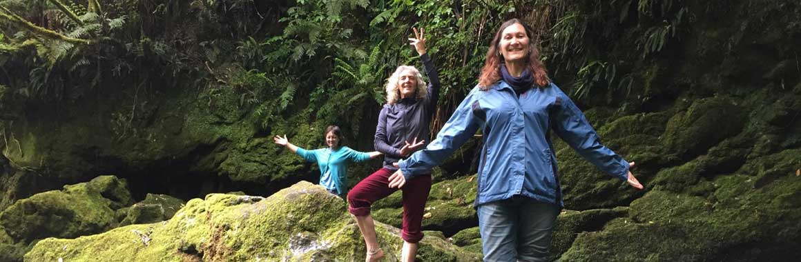 dru yoga teacher training, new zealand