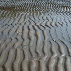 avatar sand and sea