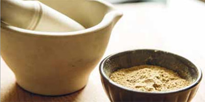 Ayurvedic medicinal spice with pestle and mortar