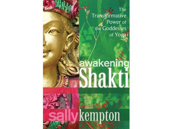 Front cover of Awakening Shakti