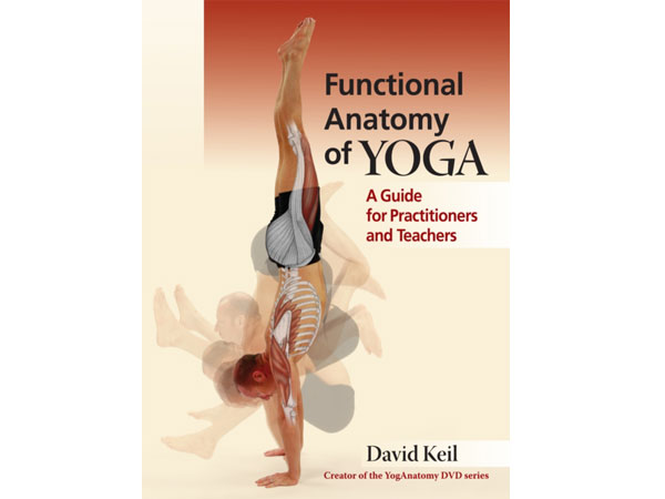 Front cover of Functional Anatomy of Yoga