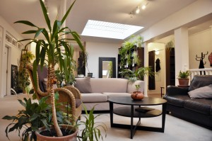 light centre, belgravia