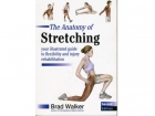 Front cover of The Anatomy of Stretching