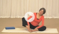 Yoga for Pregnancy - Class 2