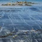 avatar shoreline